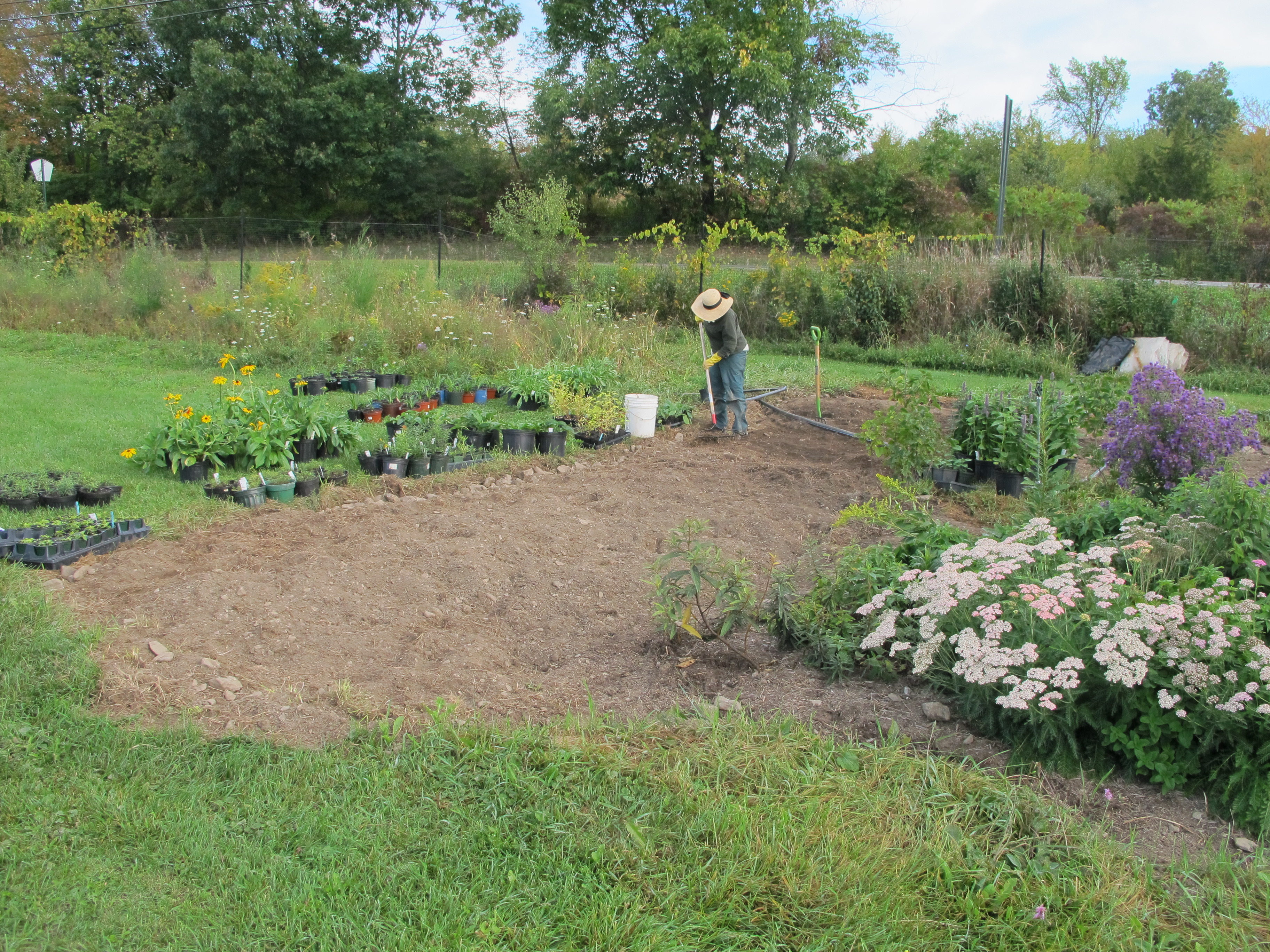 a person rakes soil to prepare more ground for planting