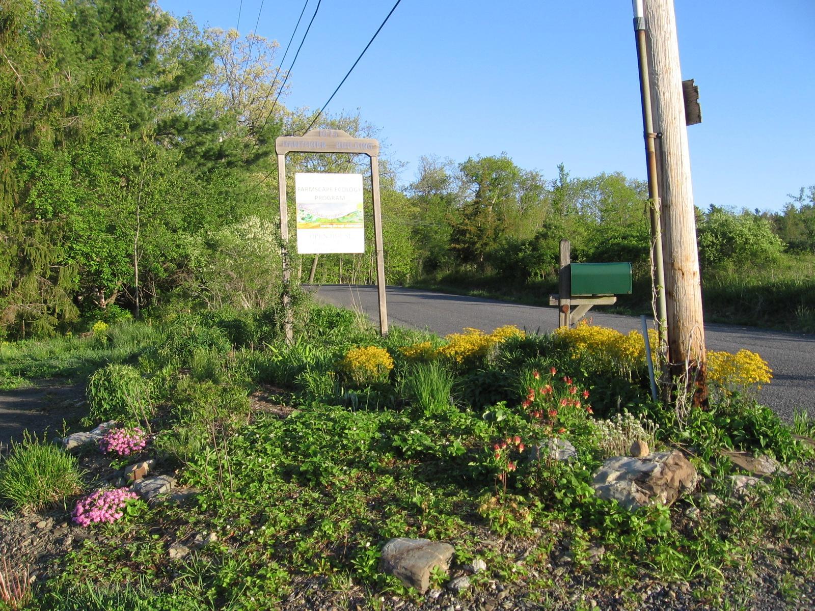Roadside Garden in May 2012